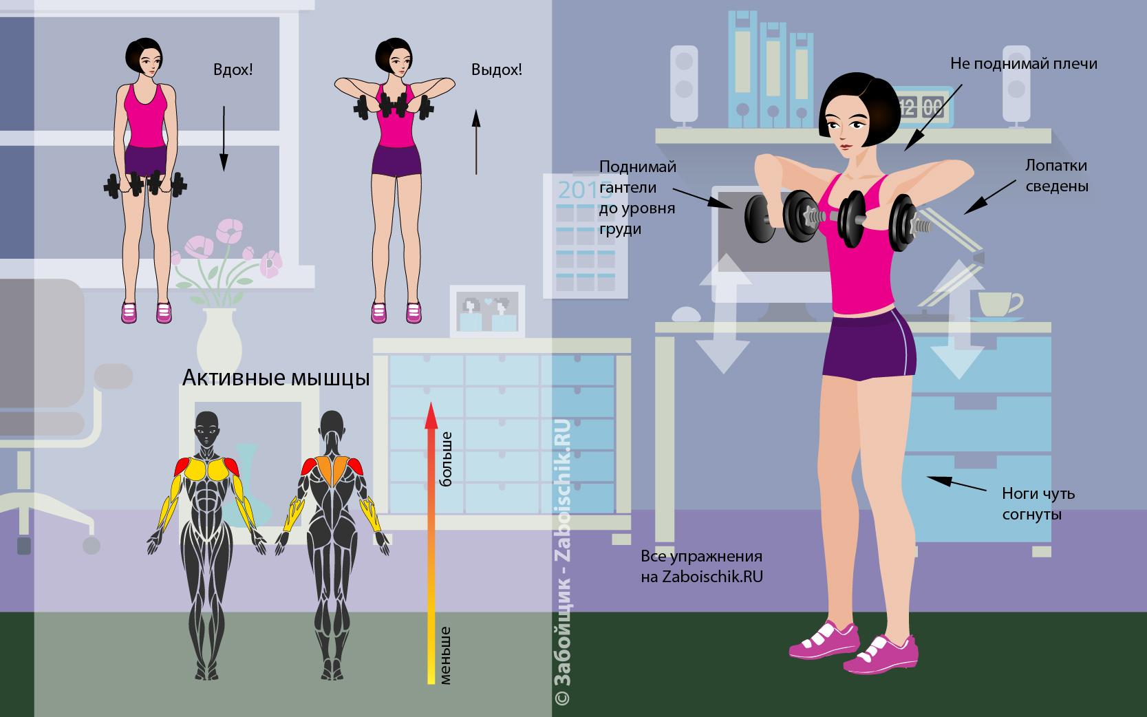 упражнения для наращивания веса дома в картинках первом